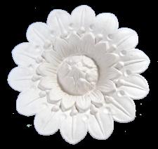 CR23-Flower-Light-Surround